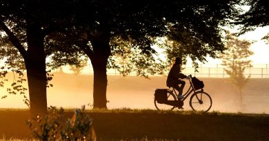 morning, dawn, bike