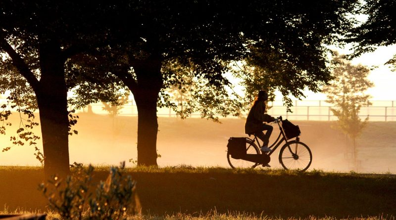 morning, dawn, bike